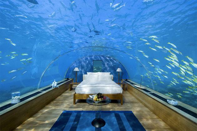 Dormir en compagnie des poissons